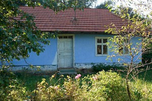 Carpathian cottage for sale